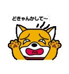 柴犬くんの日常 熊本弁編(個別スタンプ:16)