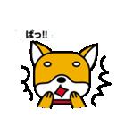 柴犬くんの日常 熊本弁編(個別スタンプ:18)