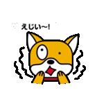 柴犬くんの日常 熊本弁編(個別スタンプ:21)