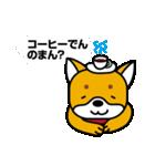 柴犬くんの日常 熊本弁編(個別スタンプ:24)