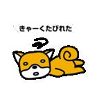 柴犬くんの日常 熊本弁編(個別スタンプ:26)