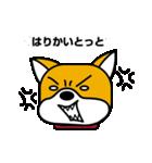 柴犬くんの日常 熊本弁編(個別スタンプ:30)