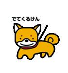 柴犬くんの日常 熊本弁編(個別スタンプ:34)