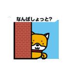 柴犬くんの日常 熊本弁編(個別スタンプ:35)