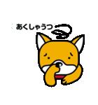柴犬くんの日常 熊本弁編(個別スタンプ:37)