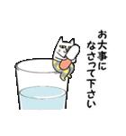 タイツをはいた猫・3~敬語編~(個別スタンプ:15)