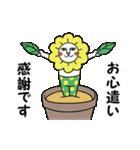 タイツをはいた猫・3~敬語編~(個別スタンプ:16)