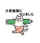 タイツをはいた猫・3~敬語編~(個別スタンプ:35)