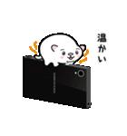 白玉ネコのたま 2(個別スタンプ:30)