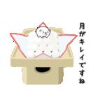 白玉ネコのたま 2(個別スタンプ:37)