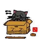 国産黒毛和猫 黒丸(個別スタンプ:15)