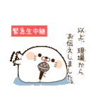 毒舌あざらし7(個別スタンプ:14)
