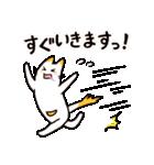 ねこのぽっけ(個別スタンプ:02)