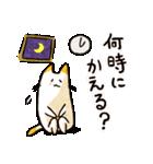 ねこのぽっけ(個別スタンプ:06)