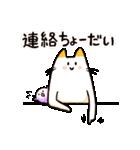 ねこのぽっけ(個別スタンプ:07)