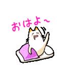 ねこのぽっけ(個別スタンプ:24)