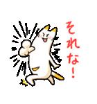 ねこのぽっけ(個別スタンプ:30)