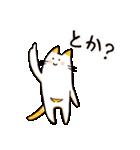 ねこのぽっけ(個別スタンプ:40)