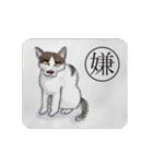 猫のカルタ風(個別スタンプ:13)