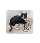 猫のカルタ風(個別スタンプ:22)