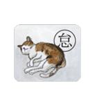 猫のカルタ風(個別スタンプ:37)