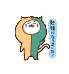 にゃんなま( Beginner)(個別スタンプ:05)