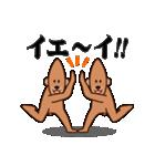 イミフクマ2(個別スタンプ:16)