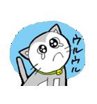 猫仲間(個別スタンプ:03)
