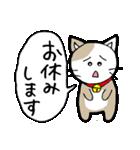 猫仲間(個別スタンプ:12)