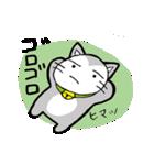 猫仲間(個別スタンプ:13)