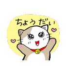 猫仲間(個別スタンプ:16)