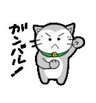 猫仲間(個別スタンプ:19)