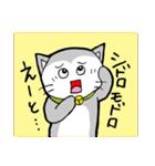 猫仲間(個別スタンプ:22)