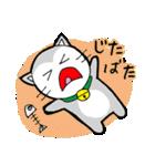 猫仲間(個別スタンプ:24)