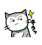 猫仲間(個別スタンプ:33)