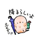 オカメくんとピンクちゃん Vol.3(個別スタンプ:01)