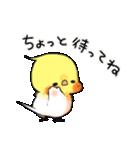 オカメくんとピンクちゃん Vol.3(個別スタンプ:30)