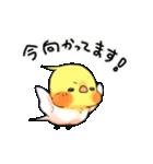 オカメくんとピンクちゃん Vol.3(個別スタンプ:33)