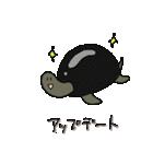 再び亀君(個別スタンプ:05)