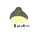 再び亀君(個別スタンプ:24)