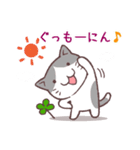 猫と四つ葉のクローバー 4(個別スタンプ:02)
