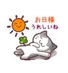 猫と四つ葉のクローバー 4(個別スタンプ:09)