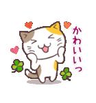 猫と四つ葉のクローバー 4(個別スタンプ:14)