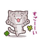 猫と四つ葉のクローバー 4(個別スタンプ:16)