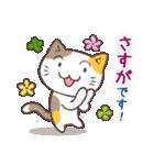 猫と四つ葉のクローバー 4(個別スタンプ:17)