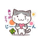 猫と四つ葉のクローバー 4(個別スタンプ:20)