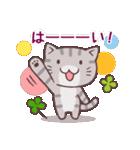 猫と四つ葉のクローバー 4(個別スタンプ:21)