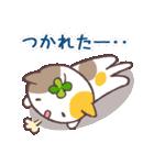 猫と四つ葉のクローバー 4(個別スタンプ:24)