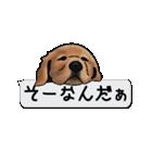 犬が寝ちゃってて読みにくいスタンプ(個別スタンプ:11)