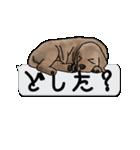 犬が寝ちゃってて読みにくいスタンプ(個別スタンプ:22)